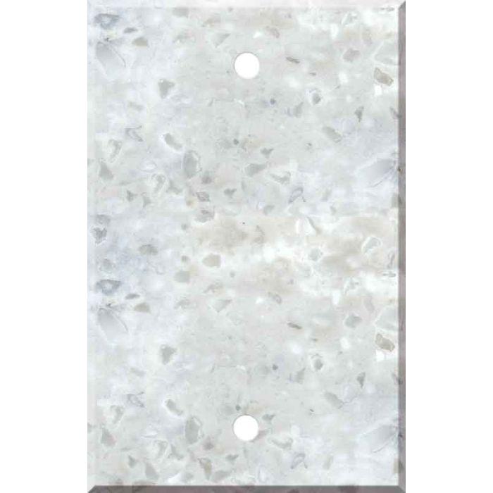 Corian Arrowroot Blank Wall Plate Cover