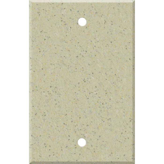 Corian Burled Beach Blank Wall Plate Cover