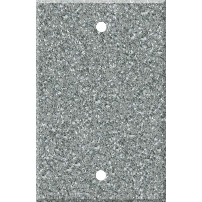 Corian Platinum Blank Wall Plate Cover
