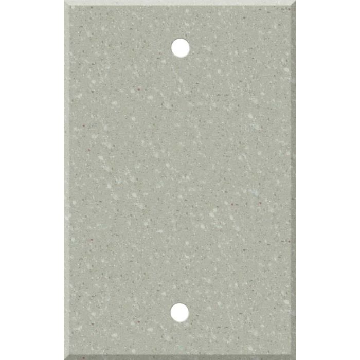 Corian Willow Blank Wall Plate Cover