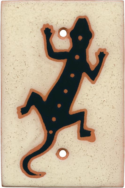 Desert Gecko Blank Wall Plate Cover