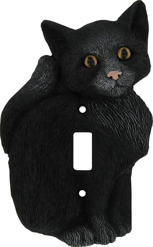 House Cat Black